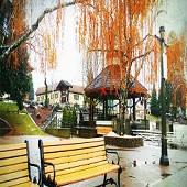 西雅圖+德國村+奧林匹克國家公園 3日遊-2021