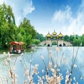 九天北京南京揚州蘇州上海(2020)