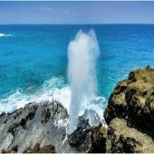美國 夏威夷州 檀香山 5日遊-2021