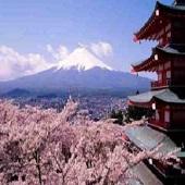 日本經典之旅 雙溫泉豪華美食6日遊–2020