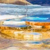深度黃石公園4天-2021