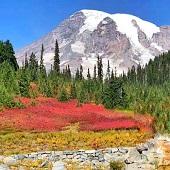 西雅圖+奧林匹克國家公園+雷尼爾火山國家公園+德國村 4日遊-2021